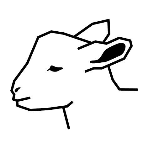 Lamsvlees van Texel